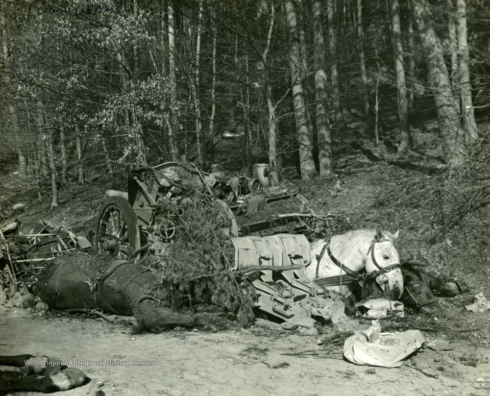 "Information included on back: ""Dead horses and wrecked vehicles of German convoy are strewn along road in vicinity of Lus, Germany. Following attack on convoy by American Dive Bombers. Germans were trying to escape from encirclement by troops of the 3rd and 7th U.S. Armies."" (U.S. Signal Corps)."