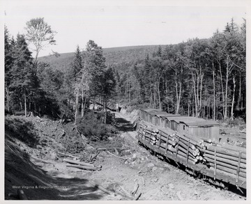Log train passing logging camp. Note Log Dump in Foreground, Mower Lumber Co.