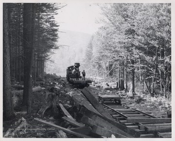 Train engine on tracks in forest.