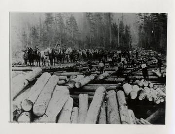 Large group of men and horses standing on logs.