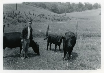 Scott Henry standing beside his angus cattle.