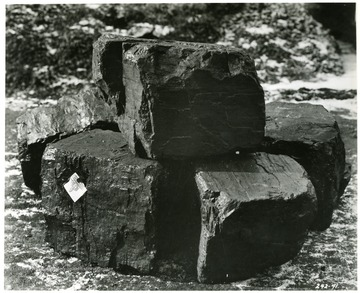Close up of blocks of Coal.