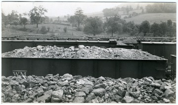 Filled coal cars at Thomas, W. Va.