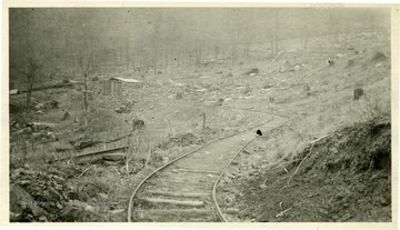 Tracks running through deforested area.