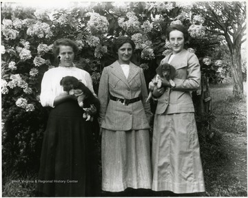 Three women standing in front of a blossoming tree while holding two puppies.  Helvetia, W. Va.  Woman on the right is Olga Aegerter Holtkamp.