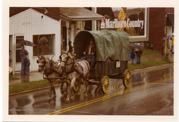 Two horses are pulling a covered wagon during the Monongalia County Bicentennial Parade in Morgantown, West Virginia.