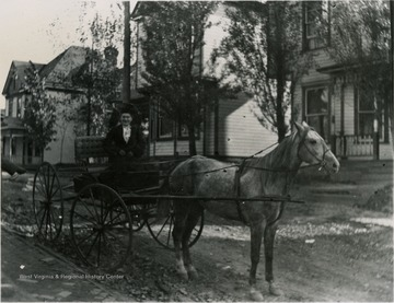 Smiling woman in a horse and buggy on Willey Street.