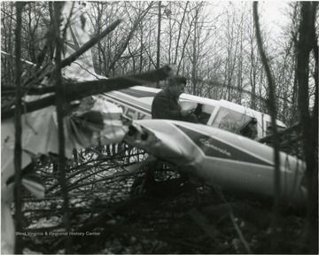 A man looking at an airplane crash in a wooded area.