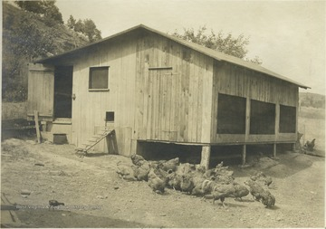 "Poultry House of Mr. T. H. Snider, R.F.D.1, Ravenwood. One hundred to one hundred and fifty pure-bred Barred Rocks are housed in this house, 16'4""x20'8"". The front part is a scratching shed, the rear, a roosting room. The sales last year ammounted to $104.87.' From photo album labeled 'Stewart A. Cody, County Agent, Jackson County, 1912.'"