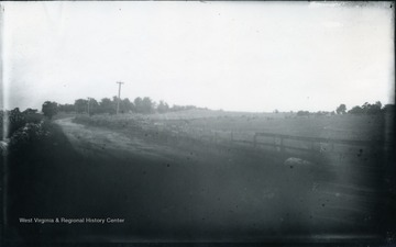 'Winchester is behind. The ground is that between the two armies before the last attack of the Federals. The Union men formed line on the slight rise of ground which makes the horizon, and the Conf. were where we stand. Under the trees on the left is a fine old mansion where W. went to go get milk. The next view (No 108) is taken from the place looking in the same general direction as this. The battle referred to in this and the following view is Sheridan's in 1864. 107.D.(64); July 31, 1884, Thursday 12:10 p.m.'