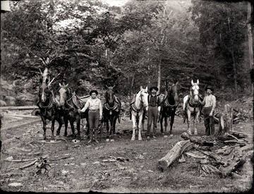 A portrait of loggers and their work horses in Helvetia, W. Va.