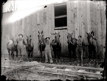 Three loggers and six work horses; each logger holds a horse on each side; the photo appears to be taken right outside of the mill.