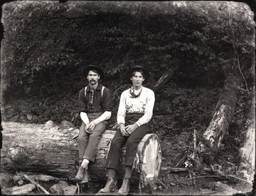 A view of two loggers resting on felled tree.