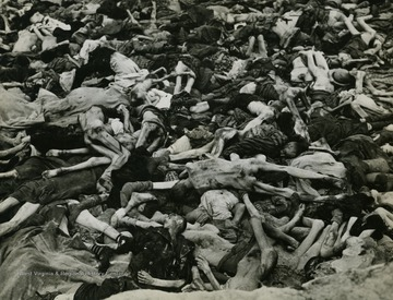 Over its twelve years as a concentration camp, the Dachau administration recorded the intake of 206,206 prisoners and 31,951 deaths. This number varies according to the source but the totals are overwhelming regardless. Photographic evidence of the Holocaust, such as this, extinguished claims that reports of horrific Nazi Death Camps was Allied propaganda.
