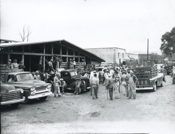 View from the exterior of the market building. Automobiles are seen carting animals away through the crowded road.