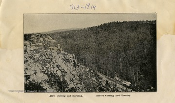 "This image is part of the Thompson Family of Canaan Valley Collection. The Thompson family played a large role in the timber industry of Tucker County during the 1800s, and later prospered in the region as farmers, business owners, and prominent members of the Canaan Valley community.This image shows an area of land with trees ""After Cutting and Burning"" and ""Before Cutting and Burning"""