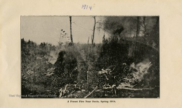 This image is part of the Thompson Family of Canaan Valley Collection. The Thompson family played a large role in the timber industry of Tucker County during the 1800s, and later prospered in the region as farmers, business owners, and prominent members of the Canaan Valley community.A forest fire near Davis, W. Va in the Spring of 1914.