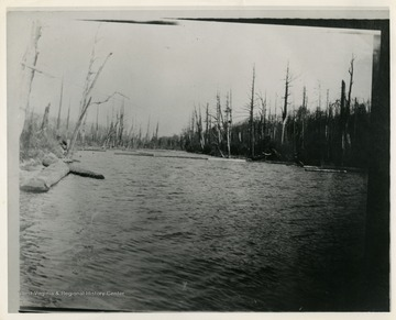 This image is part of the Thompson Family of Canaan Valley Collection. The Thompson family played a large role in the timber industry of Tucker County during the 1800s, and later prospered in the region as farmers, business owners, and prominent members of the Canaan Valley community.The location of the photograph is likely to be Blackwater River near Canaan Valley, W. Va.