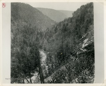 This image is part of the Thompson Family of Canaan Valley Collection. The Thompson family played a large role in the timber industry of Tucker County during the 1800s, and later prospered in the region as farmers, business owners, and prominent members of the Canaan Valley community.View of Blackwater Canyon and Blackwater River during second growth.