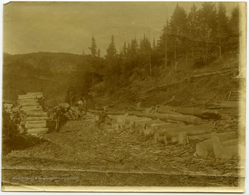"This image is part of the Thompson Family of Canaan Valley Collection. The Thompson family played a large role in the timber industry of Tucker County during the 1800s, and later prospered in the region as farmers, business owners, and prominent members of the Canaan Valley community.""Pulp job in Stark, New Hampshire, 1895. Near state road above Abbott House."""